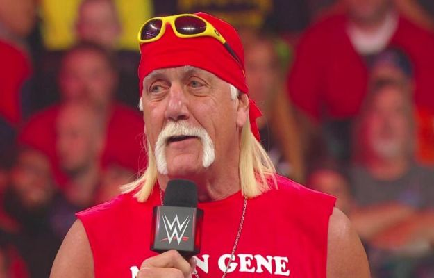 Hulk Hogan Money in the Bank