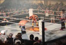 NJPW Super J-Cup