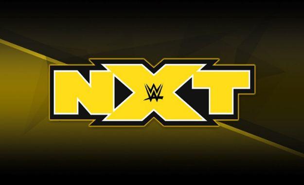 Luchador regresaría a NXT