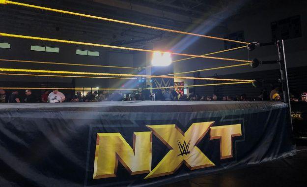WWE NXT Lesionado