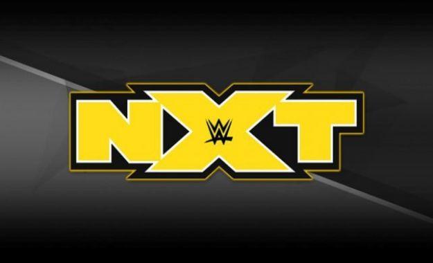 despidos de luchadores en WWE NXT